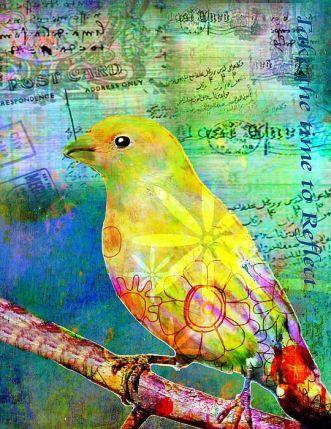 743a3a1403ac3a4eb664c1ce15b00137--yellow-birds-bird-paintings.jpg