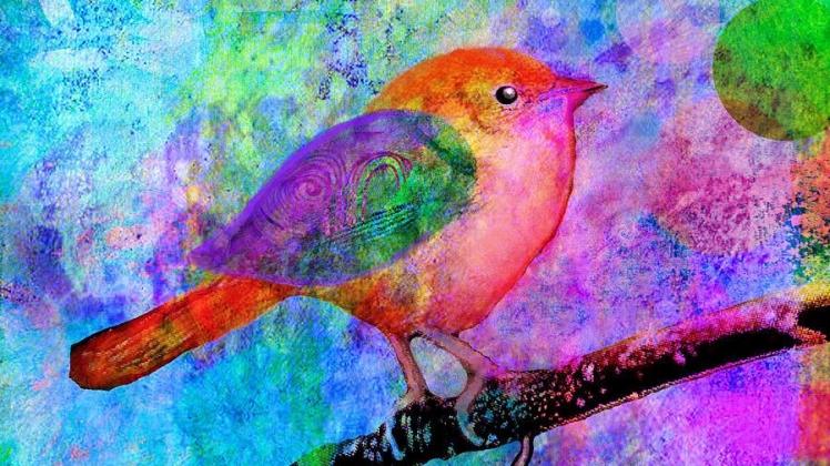 celebrate-robin-mead