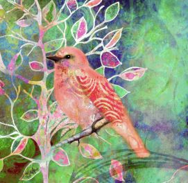 f5592f59a5e714b0ed18e953c49d99f6--small-birds-colorful-birds