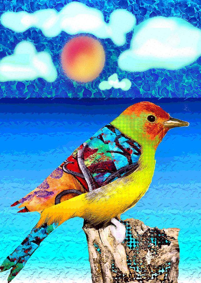 7635c5f164f9202e5e19e3668f9847b2--colorful-birds-birds-eye-view.jpg